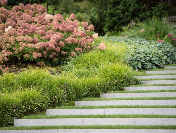 2017 trends in garden design blogs furniture and for Landscaping plants that stay small