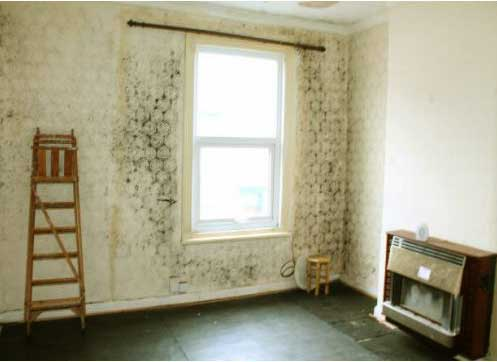 Name:  rising-damp.jpg