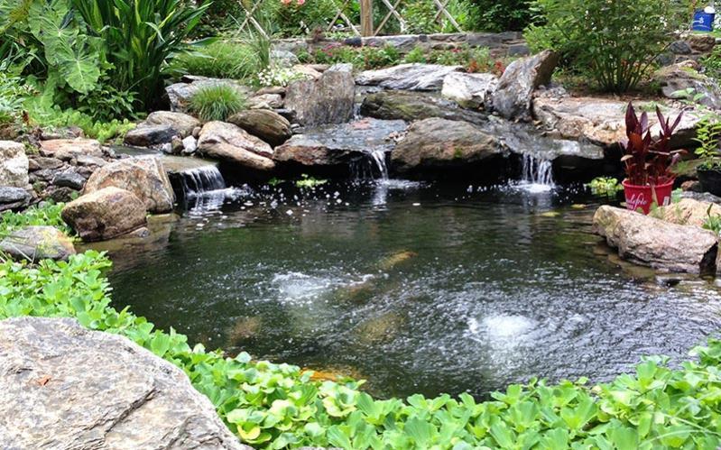 Click image for larger version.  Name:koi-pond.jpg Views:175 Size:114.6 KB ID:11338
