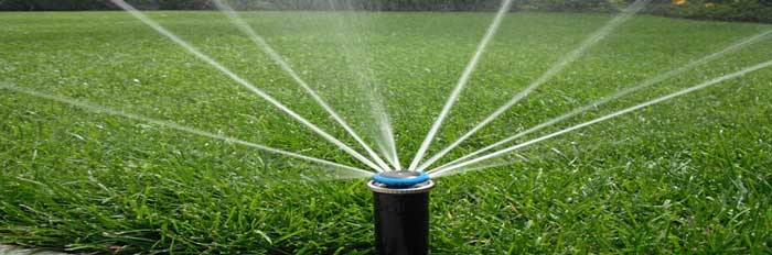 Click image for larger version.  Name:irrigation.jpg Views:239 Size:31.0 KB ID:11172