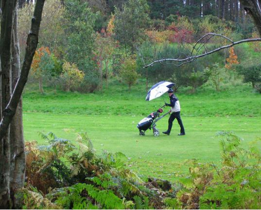 Name:  golf.jpg Views: 423 Size:  51.4 KB