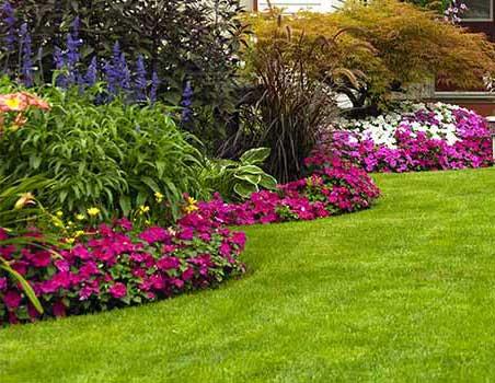 Click image for larger version.  Name:landscaping_designer.jpg Views:346 Size:39.8 KB ID:10571