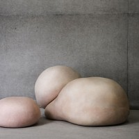 A Body of Skin by Gigi Barker
